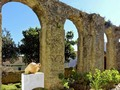 Obidos Garden And Roman Aqueduct by Stephen Frost