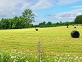 Panorama of Rural Sussex by Stephen Frost