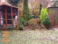 Late January Garden Today: a bleak late January day with minor snow flurry. The garden doesn't photograph...