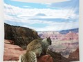 Squirrel Overlooking Grand Canyon Wall Tapestry at #Society6 by #gravityx9 -