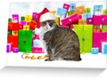 📷   * Sundae, The Christmas Cat Greeting Card * Buy any 3 and get 20%...