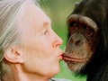 ⭐️ Jane Goodall a través del ingenio de Brett Morgen...