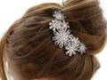 HAPPY LIVING: BEAUTIFUL HAIR CLIPS FOR LADIES