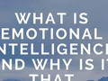What Is Emotional Intelligence And Why Is It That Important? - via sunyoananda