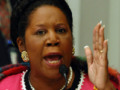 Does The House Representative Sheila Jackson Lee Represent Anyone But Herself?