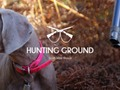 "I just liked ""HUNTING GROUND"" by CharlelieC on #Vimeo:"