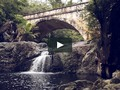 "I just liked ""Little Crystal Creek CINEMAGRAPH"" on #Vimeo:"