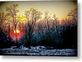 Just Another Sunset Metal Print by Mimulux Patricia No