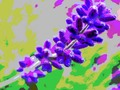 "Featured Art of the Day: ""Lavender Blue"". Buy it at:"