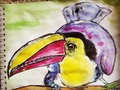 #sketchbook #aquarelle #watercolors #art #animals #photoark #tucan