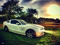 SUNSET FORD MUSTANG #sky #colombiansupercars #igerscolombia #ig_colombia #ig_cars #sunset #barranquilla #colombia