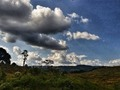 En algún lugar del mundo! 🌏 🇨🇴 📷 #evanyei77 . . . . . . . . . . . . . . . . . . . . . . . . . . . . . . . . . #Colombia #huila #landscape #sky #cloud #nature #outdoors #panoramic #tree #weather #scenic #light #daylight #season #summer #sight #hayfield #travel #traveling #visiting #instatravel #instago #snypechat #yei #photo #photooftheday