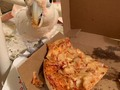 Boo got triggered to our old college days by the sight of a @dominos box. He clearly had a vivid flashback tonight 😂#collegebird #pizzaface #stlpets #birb #birbs #cockatoo #cockatoosofinstagram #cockatoos #cockatoolove #goffinscockatoo #goffinsofinstagram #bootard #boobird