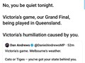 #AFLGrandFinal Yeah you better be quiet, it's cat kingdom here! 😹🐯