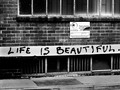 Life is Beautiful...
